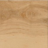 Sugar Creek Maple